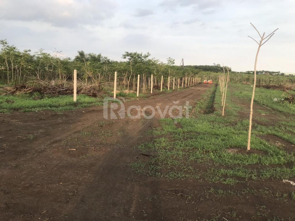 Đất vườn Trảng Bom 762m2 góc 2 mặt đường giá 550 triệu