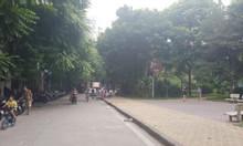 Đất vườn hoa Trần Quang Diệu, 118m2, ôtô tránh, vỉa hè rộng