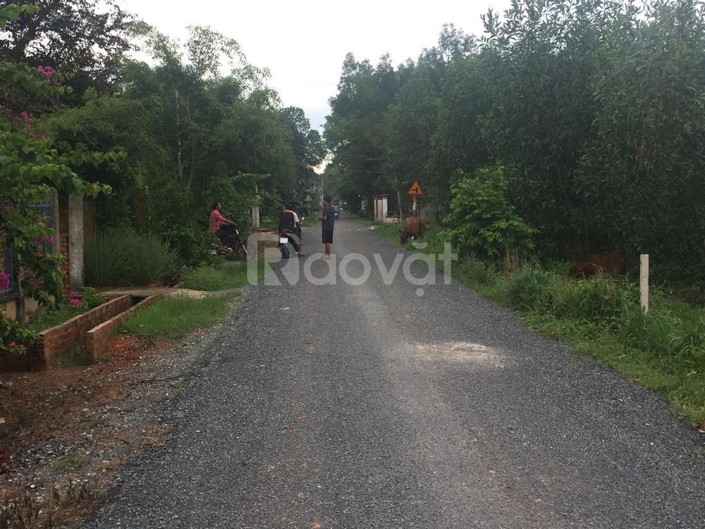 Bán gấp 1000m2 đất ONT Tân Hiệp, KDC ổn định, gần sân bay Long Thành