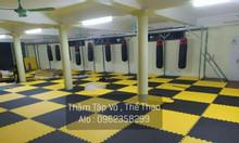 Thảm thi đấu võ thuật