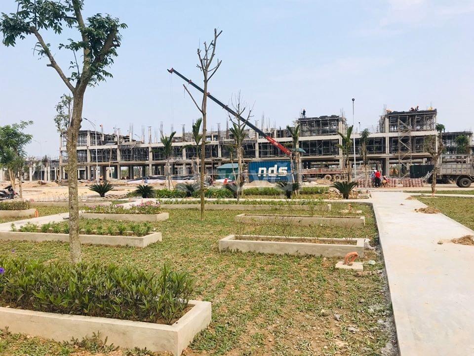 Bán suất ngoại giao khu công viên Năm Châu - dự án TNR Star