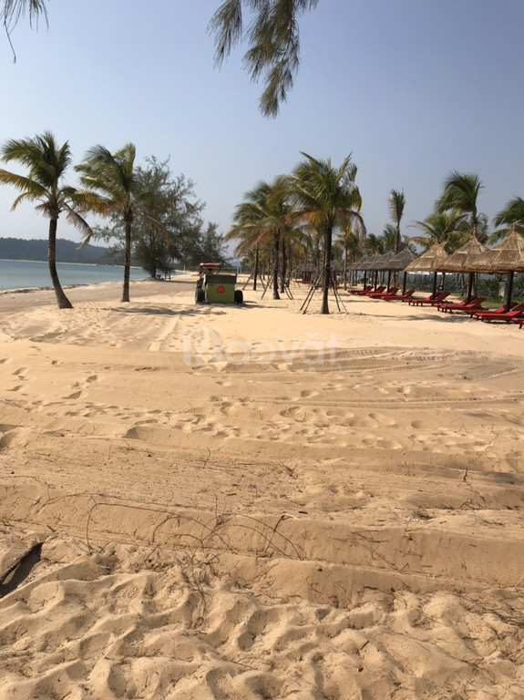 Máy làm sạch bãi biển, máy dọn rác bờ biển