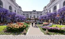 Đất nền vị trí đẹp, ngay tại trung tâm thành phố Thanh Hóa