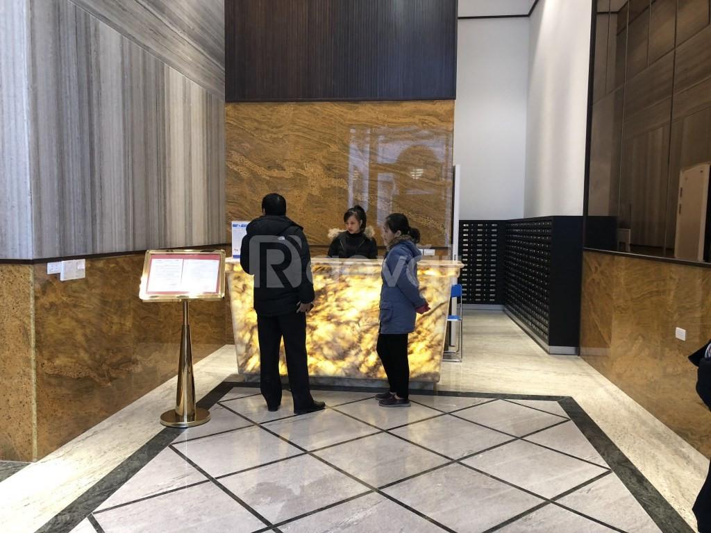 Chung cư Hoàng Mai, ở ngay, trực tiếp chủ đầu tư, bán căn ngoại giao