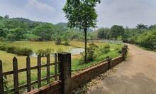 Cần bán mảnh đất thổ cư sát cạnh Resort tại Ba Vì