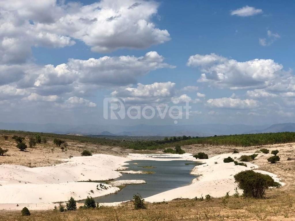 Đất Bình Thuận giá rẻ, ưu đãi trong tầm tay, sổ có sẵn