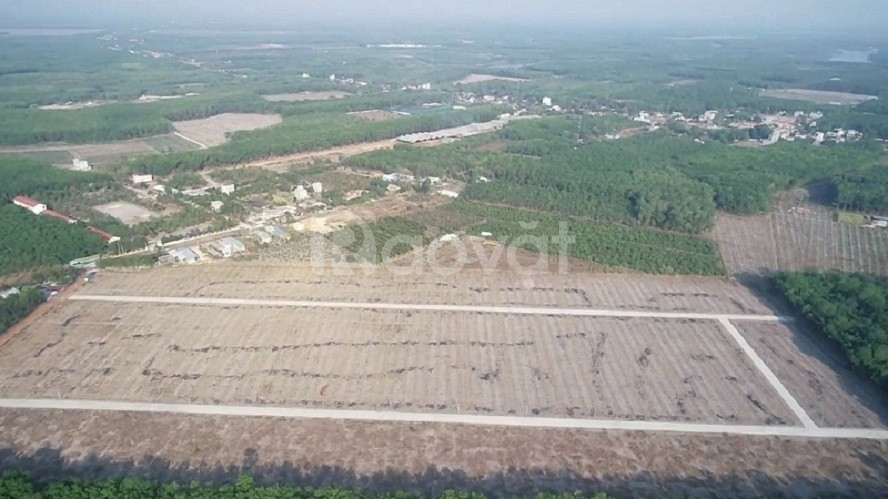 Đất khu vực Nha Bích 1000m2 giá rẻ bất ngờ thích hợp đầu tư