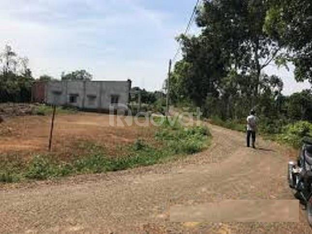 Nhà anh mình có mảnh đất ở  ấp 1 Nha Bích, Chơn Thành