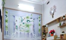 Bán nhà Nguyễn Lương Bằng mặt tiền 6,3m, KD