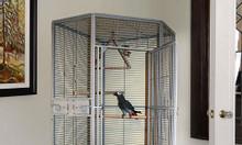 Thiết kế lồng nuôi chim cảnh đẹp