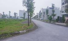 Bán đất liền kề góc 137m2 đường 17m khu B1.4 LK32-1 Thanh Hà Cienco 5