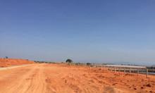 Bán 31955m2 đất trồng cây lâu năm Hàm Thuận Bắc chỉ 85k/m2  0938677909