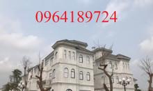 Bán biệt thự KĐT Mỹ Đình 1, Nam Từ Liêm, DT118m2, 2 mặt tiền lô góc