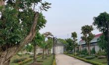 Cần bán gấp nền đất 60m2 ở Bình Tân giá rẻ