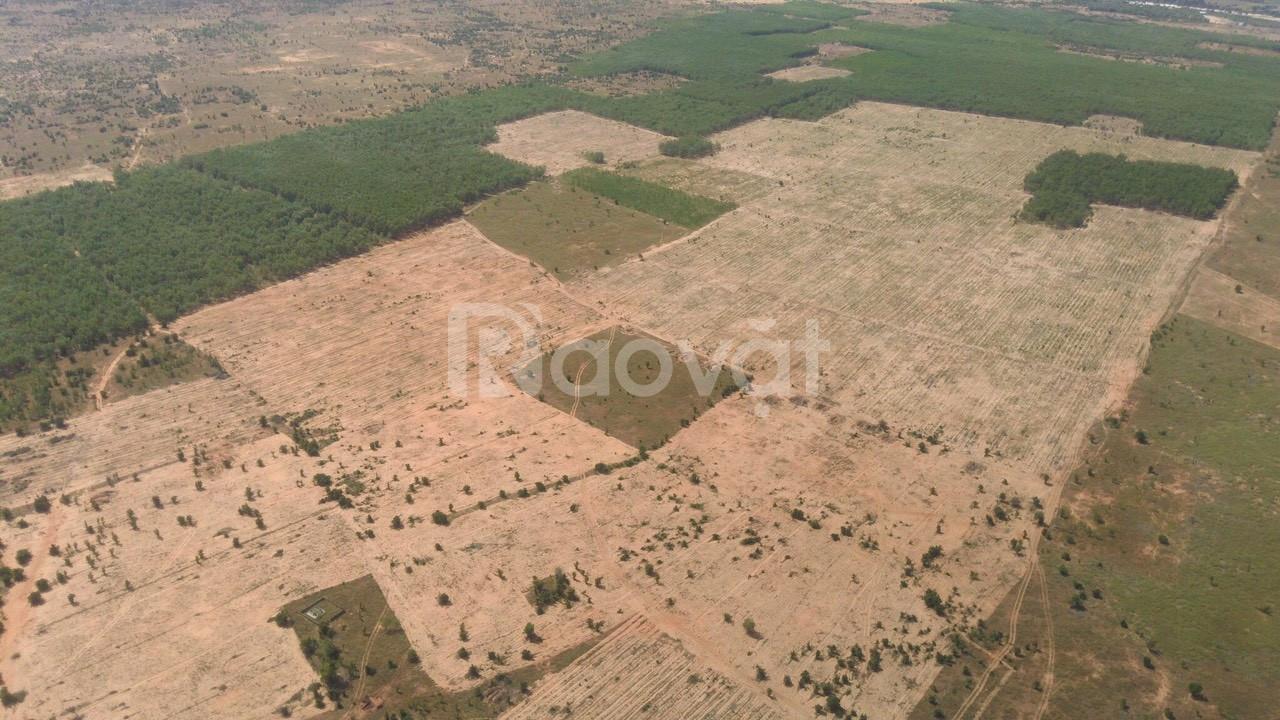 Đất tại Bình Thuận giá đất rẻ