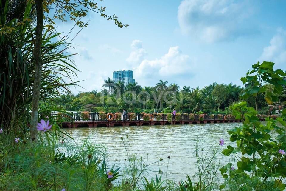Căn hộ 1-2-3PN chung cư Sky Oasis, Ecopark