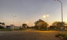 Dương Kinh Newcity