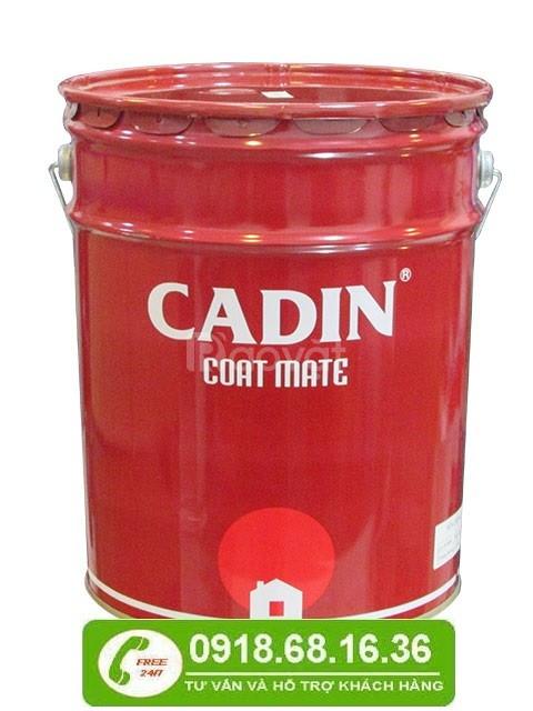 Cần mua sơn epoxy hai thành phần màu xám cho sắt tại quận 9, TPHCM