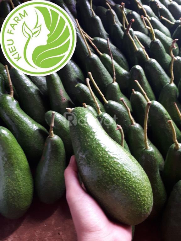 Trái cây tươi ngon chất lượng tại kieufarm
