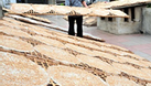 Bánh đa Bắc Giang, bánh đa Thổ Hà, phân phối và cung cấp (ảnh 1)