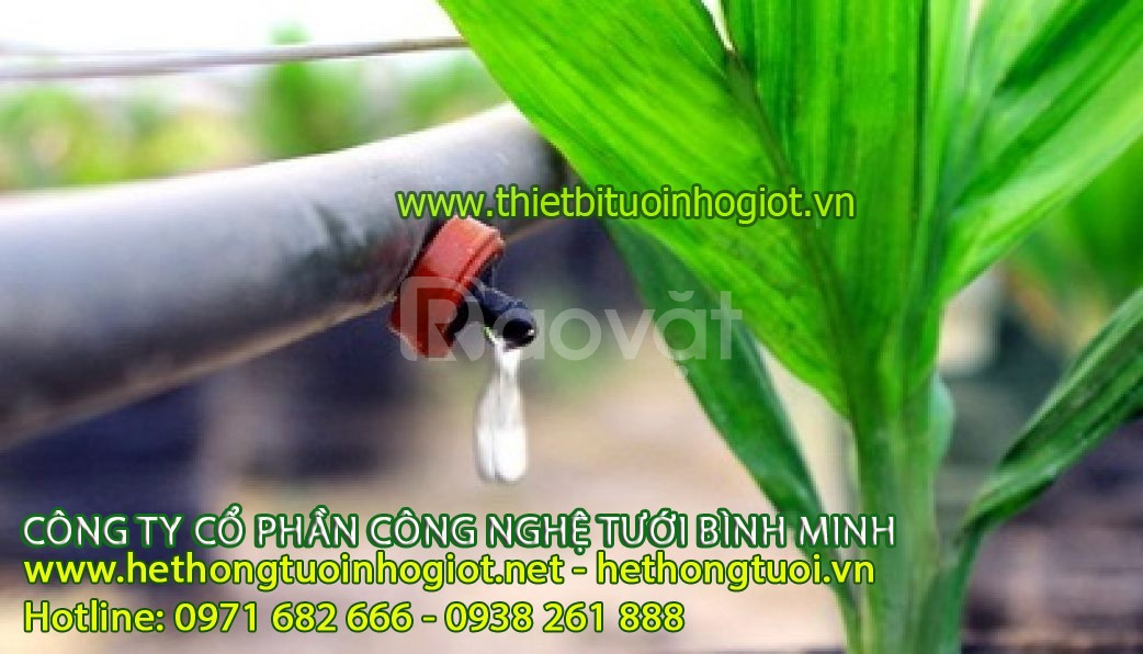 Tưới nhỏ giọt Bình Minh,hệ thống tưới nhỏ giọt Bình Minh số 1 thế giới