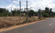Bán gấp 7x37m đất mặt tiền đường, có 90m thổ cư, xã Đá Bạc