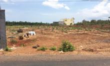 Bán đất đối diện chợ, giá 350tr, thổ cư full