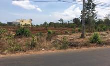 Bán gấp đất chính chủ gần khu đầu tư Vingroup, giá 350tr