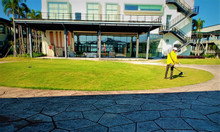 Dịch vụ chăm sóc sân vườn giá rẻ