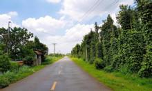 Đất mặt tiền đường Bình Giã, xã Đá Bạc giá 350tr
