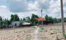 Đất vườn Nhơn Trạch giá rẻ chỉ 700 triệu/1000m2
