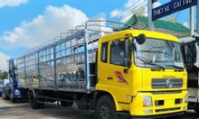 Giá xe tải Dongfeng hoàng huy 8 tấn B180 thanh lí gấp dongfeng 2019