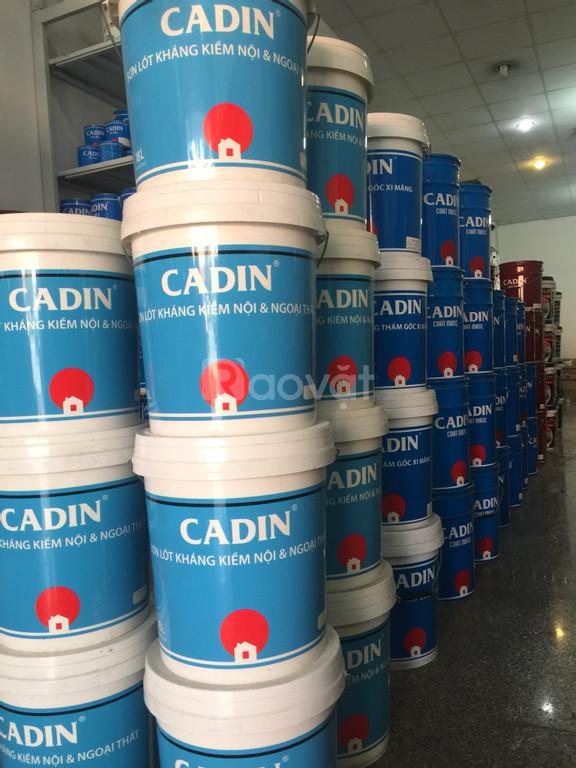 Đại lý chống thấm pha xi măng Cadin chống thấm hiệu quả