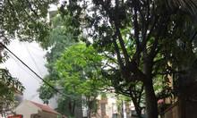 Bán nhà cấp 4 ngõ 118 Nguyễn Khánh Toàn, Nghĩa Đô