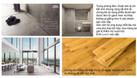 Em Sĩ xin phép update giá bán & chính sách căn hộ The Zei Tháng 6 (ảnh 3)