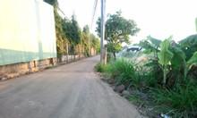 Bán đất sào xã Tân hiệp, huyện Long Thành, tỉnh Đồng Nai
