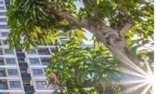 Golden Hotel 3sao  trục Trương Quốc Dung vs Nguyễn Văn Trỗi