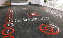 Thảm phòng tập gym, fitnees, yoga