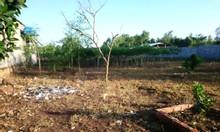 Bán đất nền xã Phước Bình, huyện Long Thành, Đồng Nai