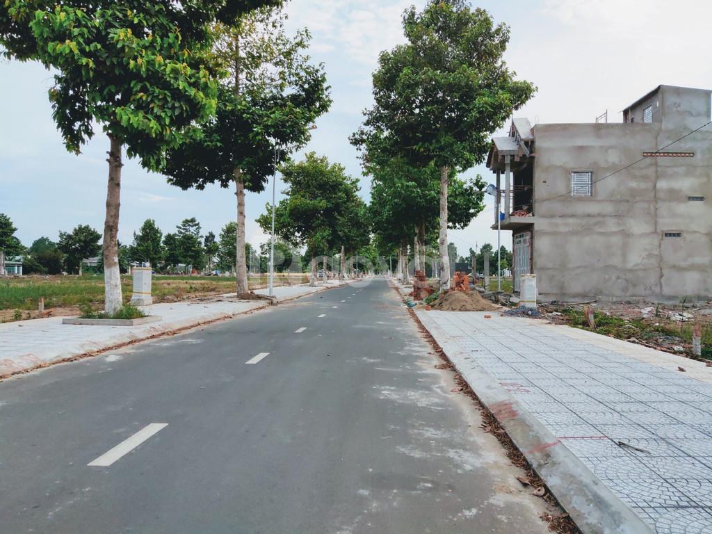 Phân khu của đô thị Stella Mega City