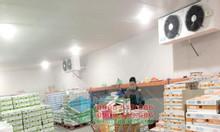Thi công phòng sạch kho bảo quản trái cây