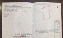 Bán gấp 13013m2 đất Nhơn Trạch - Đồng Nai