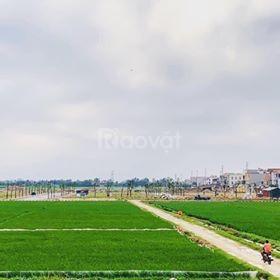 Mở bán 50 lô đất nền dự án Yên Phụ Newlife