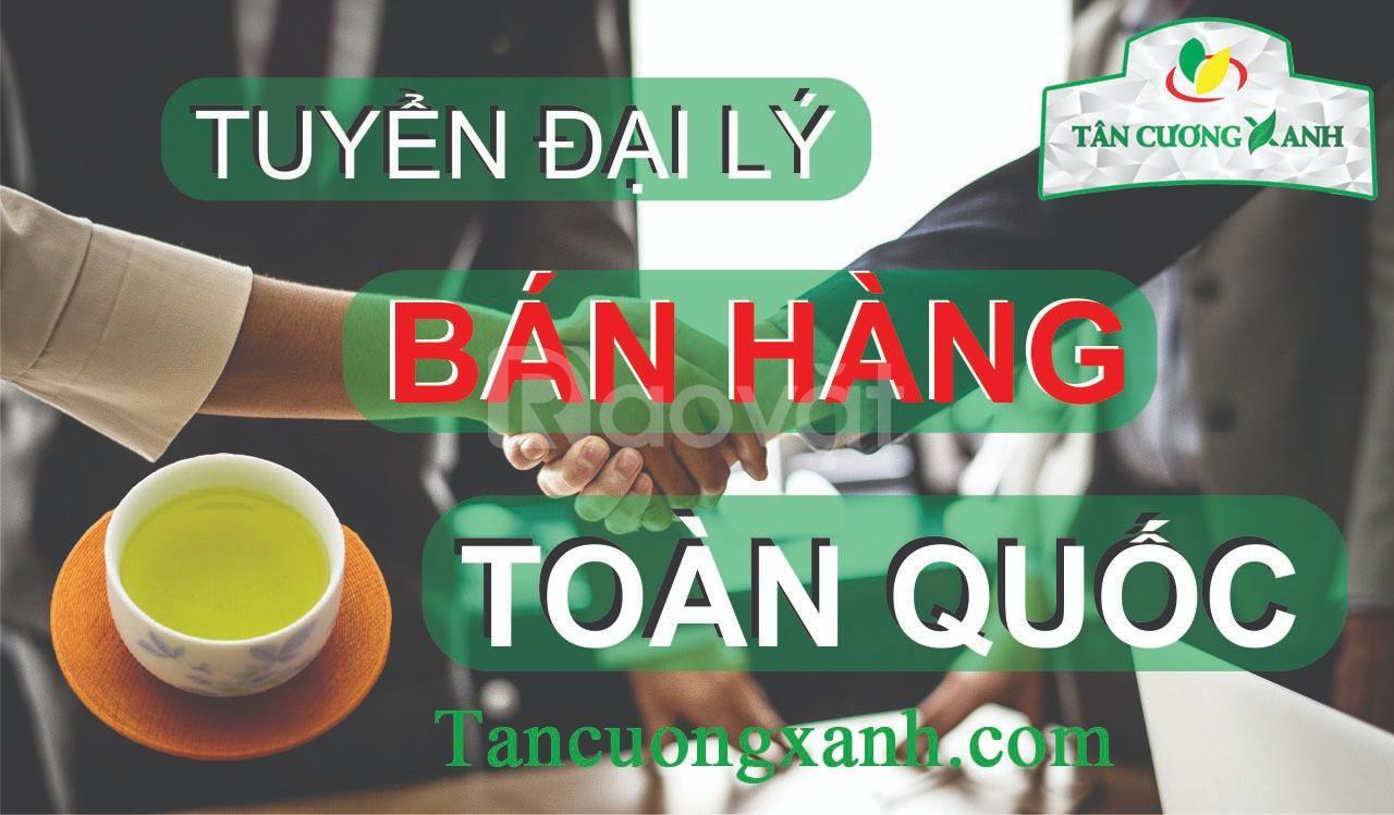 Tìm đại lý phân phối trà Thái Nguyên