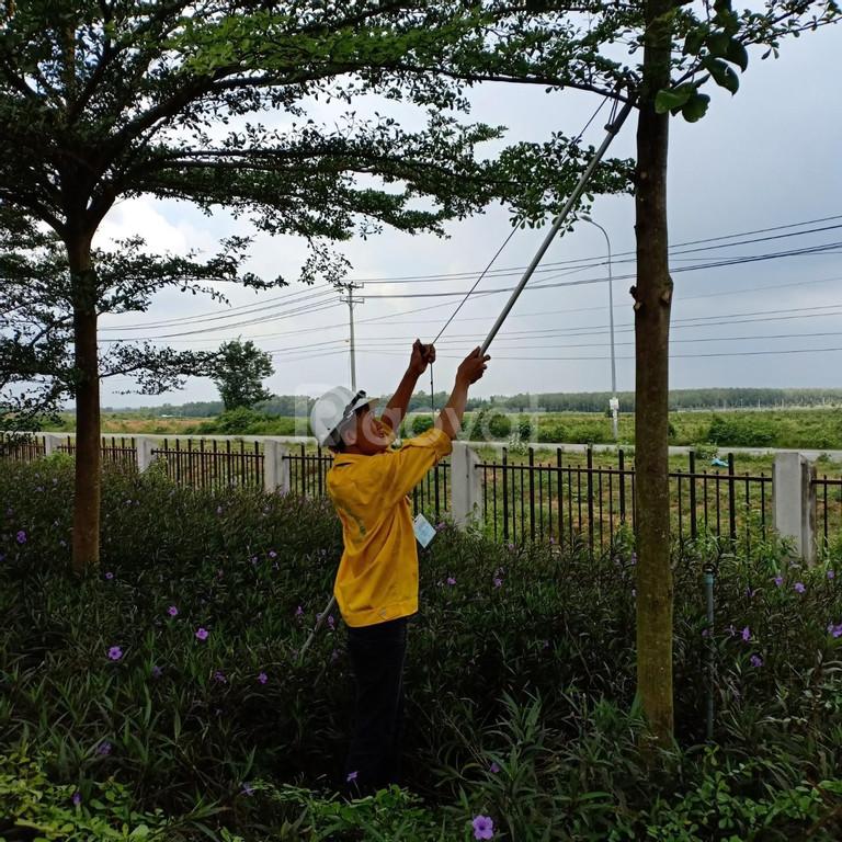 Dịch vụ cắt cỏ, phát hoang cỏ dại giá rẻ (ảnh 6)