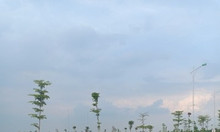 Bán lô đất mặt đường 69m vỉa hè 10m tại khu biệt thự nhà vườn Phố Nối