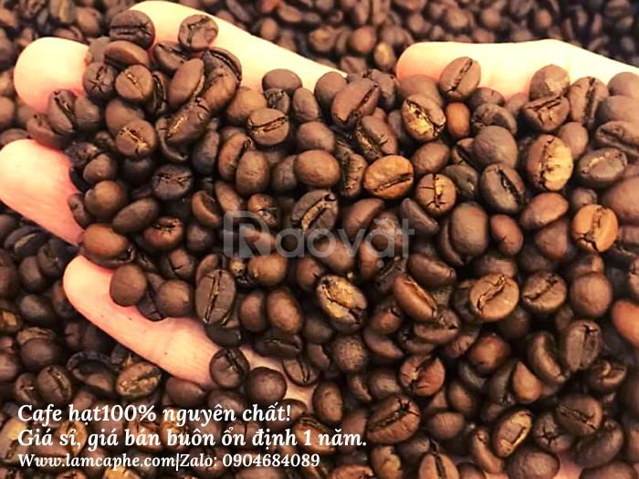 Cà phê hạt nguyên chất ở Tphcm giá sỉ, giao hàng miễn phí