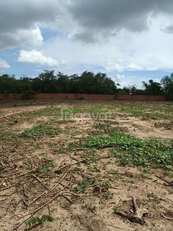 Chính chủ cần bán gấp lô đất nhà vườn xã Phước Bình, huyện Long Thành
