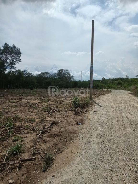 Bán đất vườn giá rẻ tại xã Phước Bình, Long Thành, sổ hồng riêng