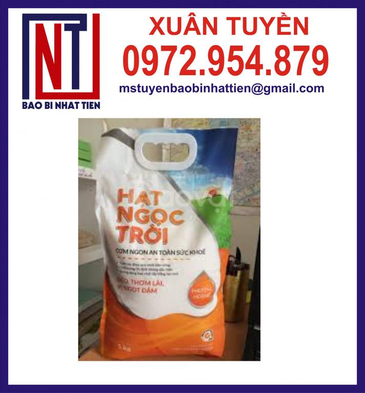 Túi PA/PE đựng gạo 5kg gắn kẹp nhựa (ảnh 5)